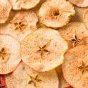 Baked-Apple-Chips-4524