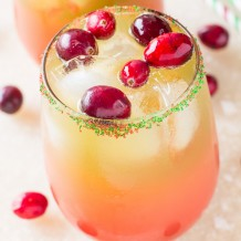 Holiday-Punch-1452