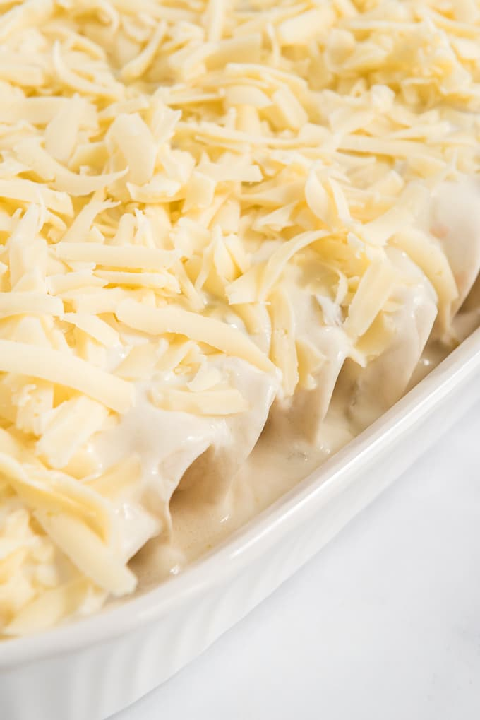 easy chicken enchiladas with cheese added