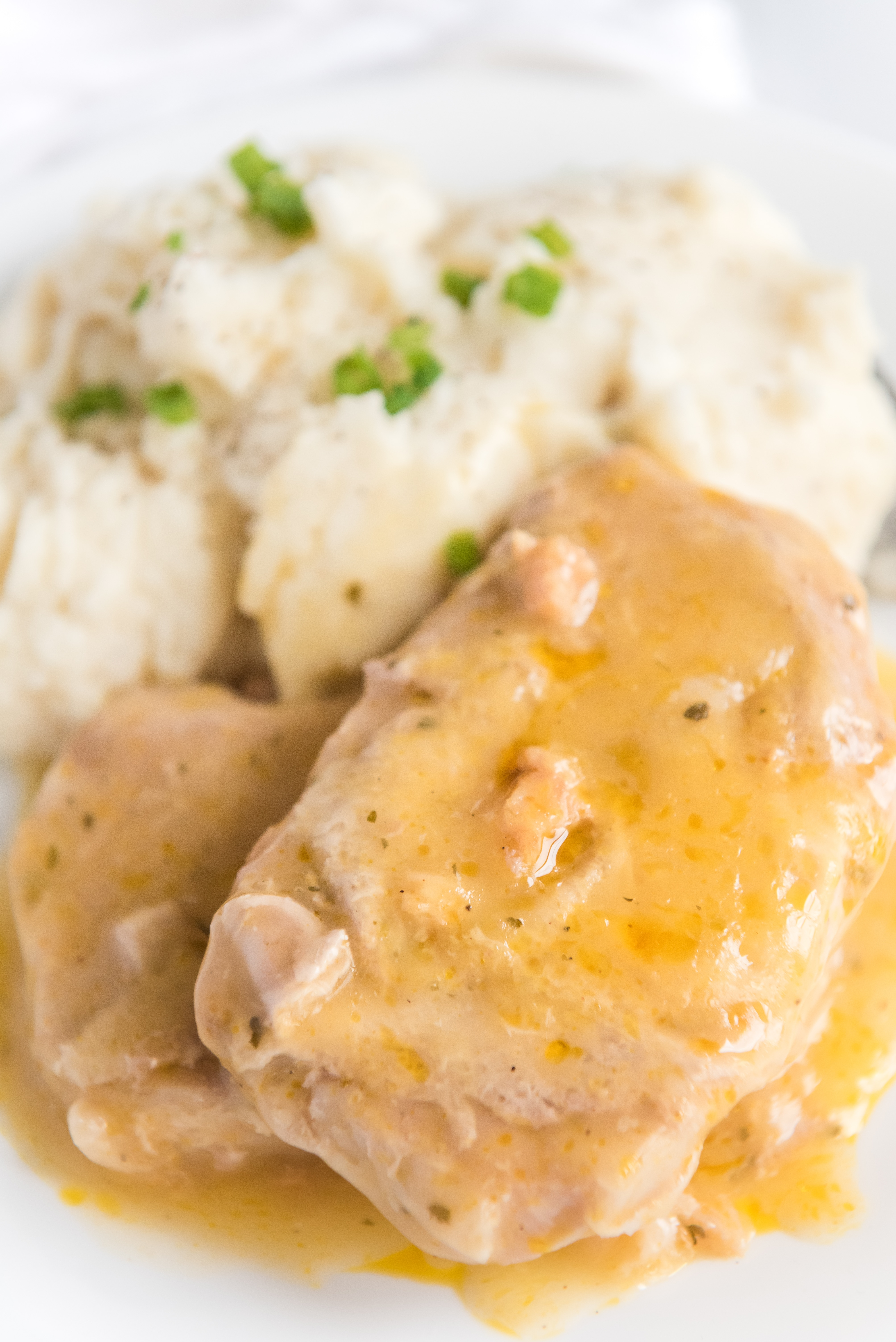 Crockpot Pork Chops Recipe