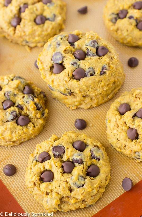 Pumpkin chocolate chip cookies are fully baked and topped with extra chocolate chips.